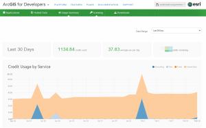 My usage summary on developers.arcgis.com